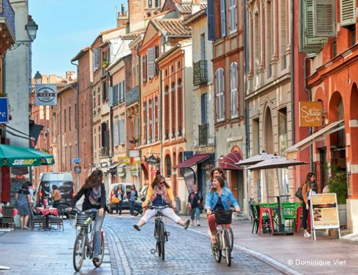 photo_tourisme_c_ville_de_toulouse_copie.jpg